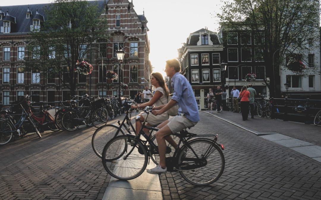 Hay bicis para la ciudad, para la montaña, para la carretera, para viajar y la Fischer Viator: el SUV de las bicis.